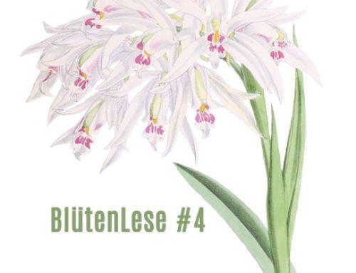 BlütenLese 4 – Anke Breuer