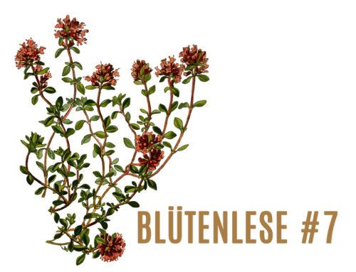 BlütenLese 7- die Autorin Rosemai M. Schmidt